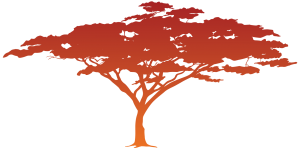 Rust colored african canopy tree
